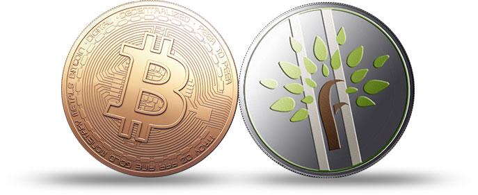 bitcoin-fc