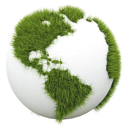 globe-forestcoin